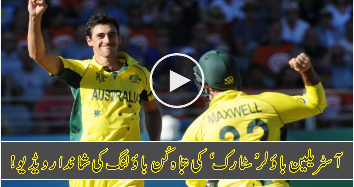 Best Wickets taken by Mitchell Starc – fast bowling at its best