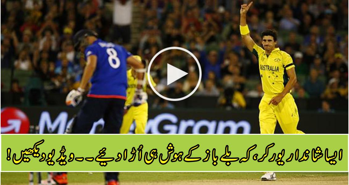 Mitchell Starc gets English batsman with unplayable yorker